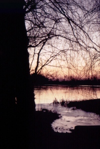 Academy Pond