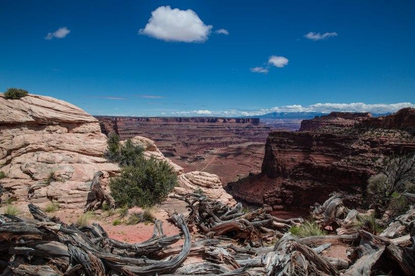 Canyonlands-14